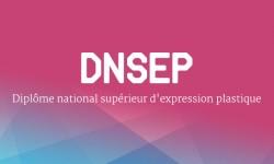 DNSEP - Diplôme national supérieur d'expression plastique
