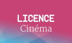 Licence Cinéma